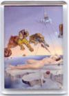 Magnéticos Dalí